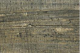 Стеновая панель АМК-Троя 2047/S Кантри