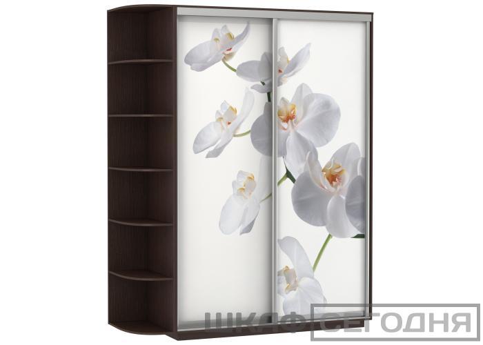 Шкаф-купе Е-1 Орхидея Дуо