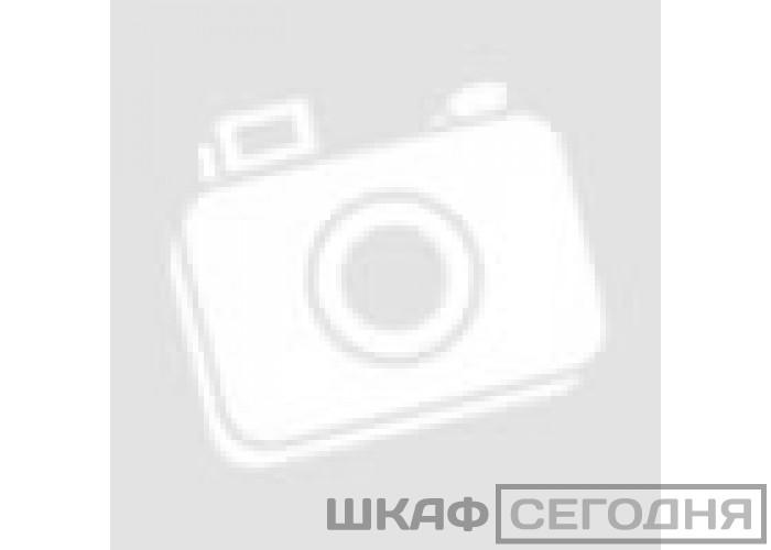 Шкаф-купе Е-1 Прайм ДДД